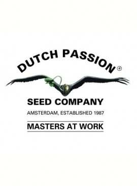 DUTCH PASSION©