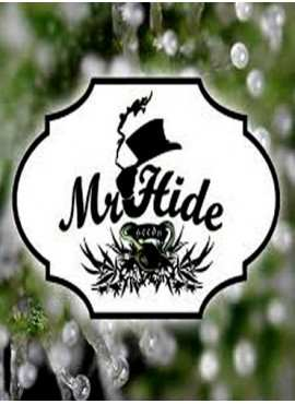 Mr.hide seeds©