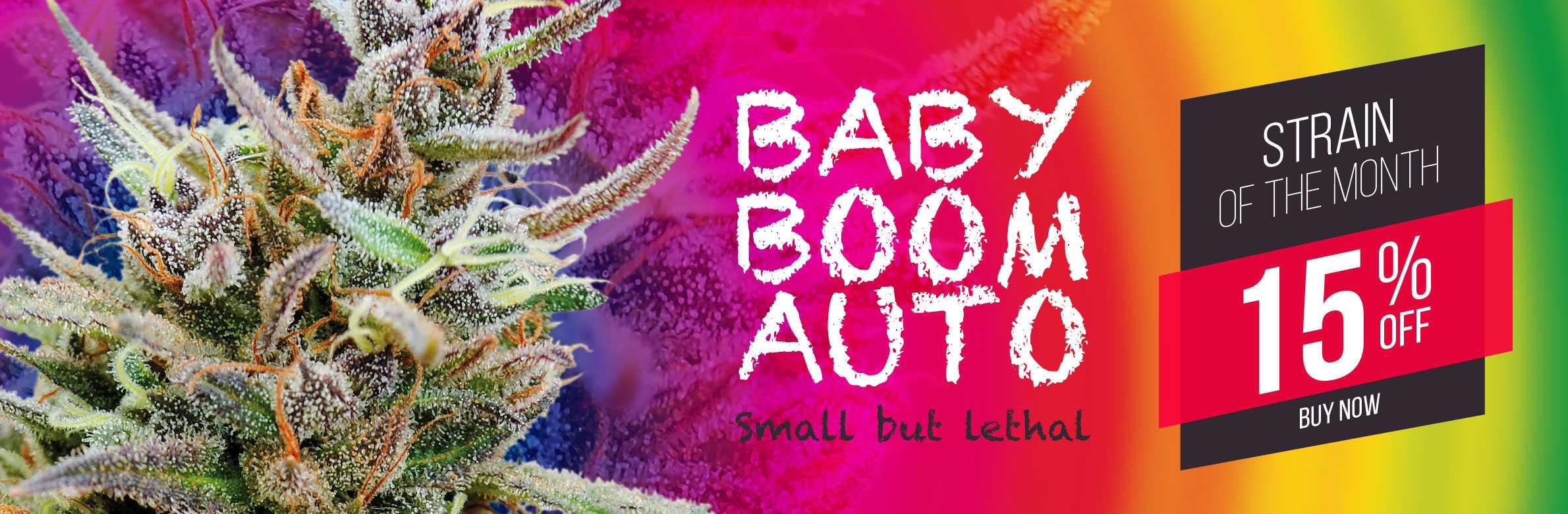 babyboomkannabia-slide-9112.jpg