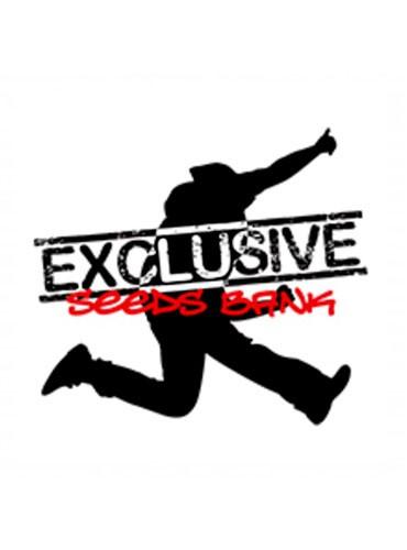EXCLUSIVE SEEDS BANK