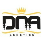 DNA GENETICS™