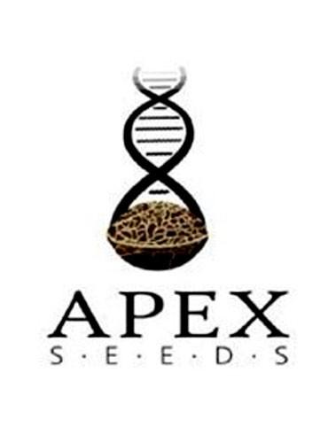 APEX SEEDS