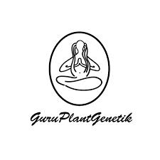 GURU PLANT GENETICS