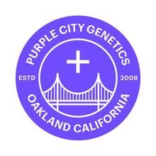 PURPLE CITY GENETICS SEEDS