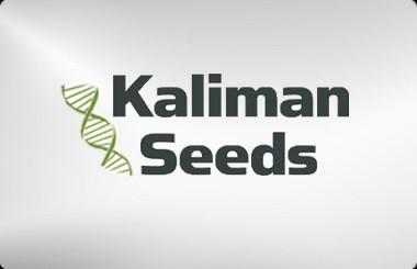 Kaliman Seeds